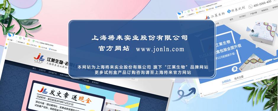 上海将来实业股份有限公司 官网公告