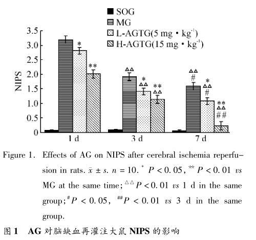 AG 对脑缺血再灌注大鼠 NIPS 的影响